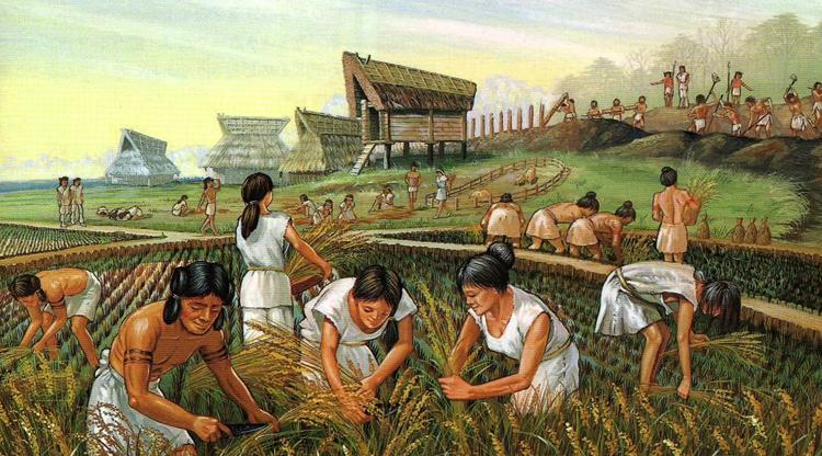 Традиционная экономика