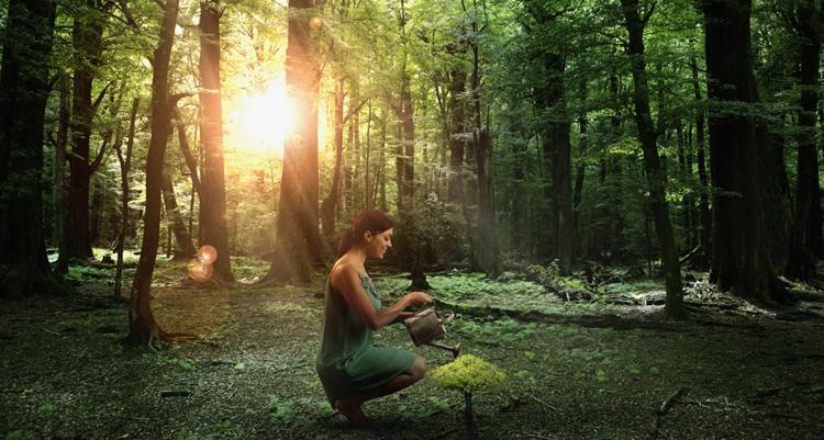 Человек помогает природе