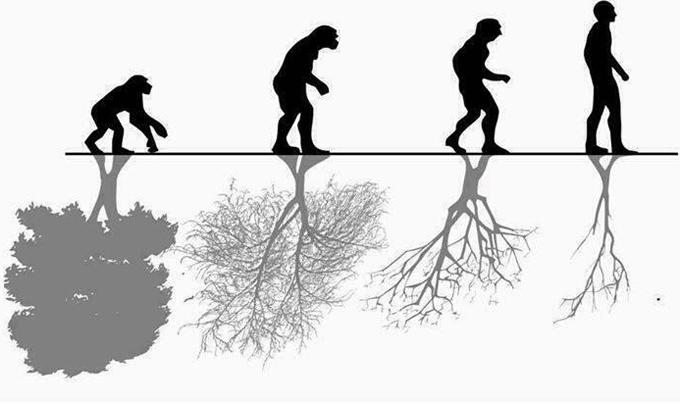 Влияние природы на человека плюсы