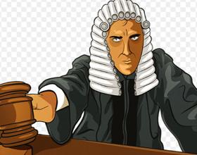 Профессия судья