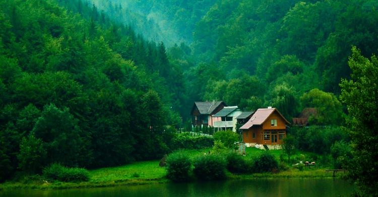 Красивый дом у леса