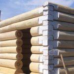 Липа как материал для строительства бани: плюсы и минусы