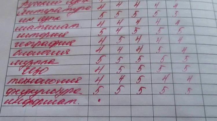 Дневник в школе