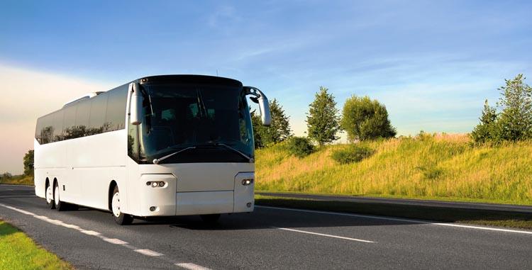 Тур на автобусе