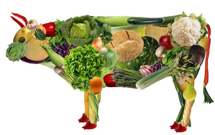 Пища вегетарианца