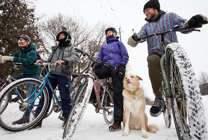 Велосипедисты с собакой