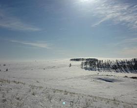 Стоит ли зимой ехать в Аркаим?