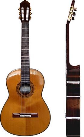 Современная классическая гитара