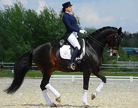 Плюсы и минусы занятий конным спортом