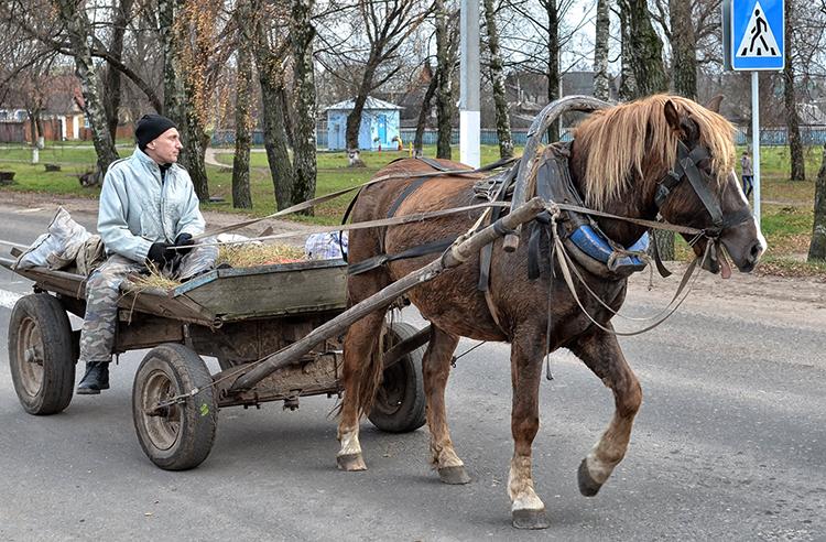 Транспорт на лошади