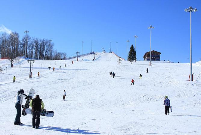 Горные лыжи в Вологде