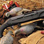 16 калибр на охоте — плюсы и минусы