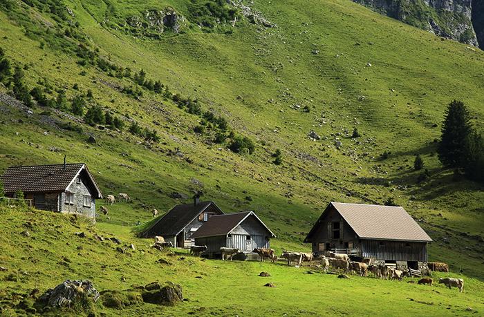 Дома в горах
