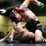 Смешанные боевые искусства (MMA) — стоит ли ими заниматься?