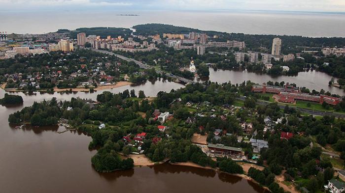 Город Сестрорецк