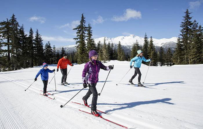 Люди занимаются лыжным спортом
