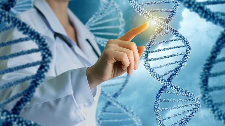 Генетик