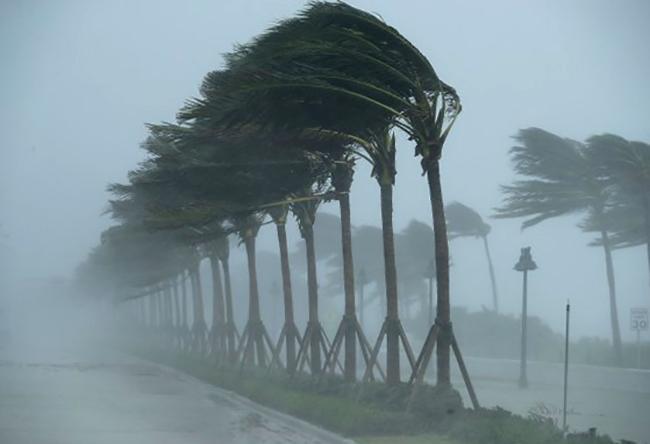 Во время урагана