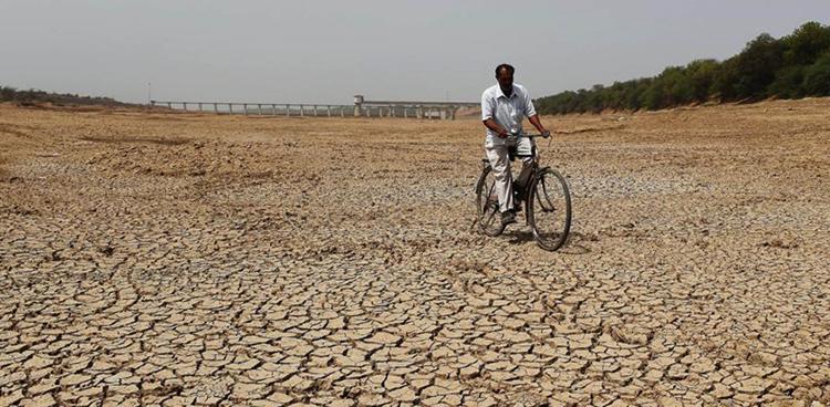 Засуха и потепление