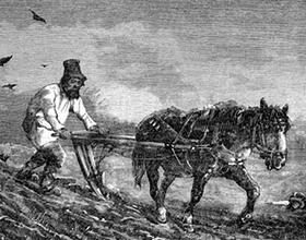 Указ о вольных хлебопашцах 1803: причины и последствия