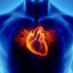 Ишемическая болезнь сердца: причины и последствия