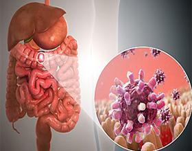 Причины и последствия кишечной инфекции