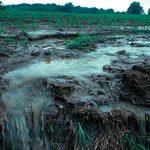 Причины и последствия загрязнения литосферы