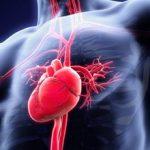 Тахикардия сердца: причины и последствия