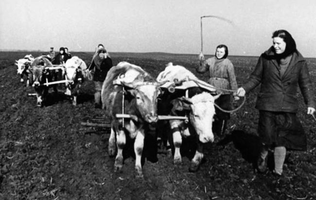 Упадок сельского хозяйства