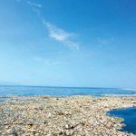 Причины и последствия загрязнения мирового океана