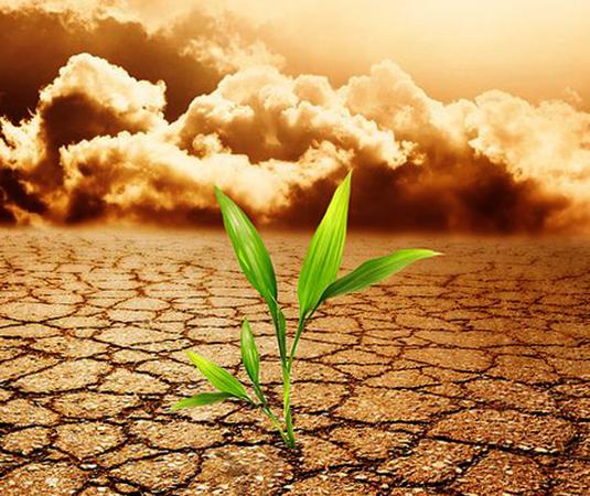 Загрязненная почва