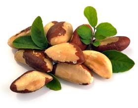 Бразильский орех — польза и вред для организма