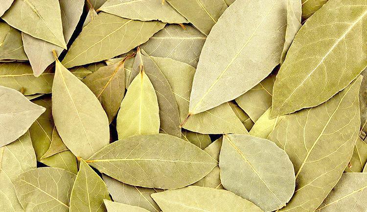 Много лаврового листа