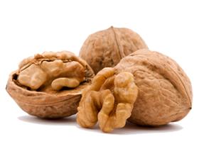 Грецкие орехи — польза и возможный вред для организма